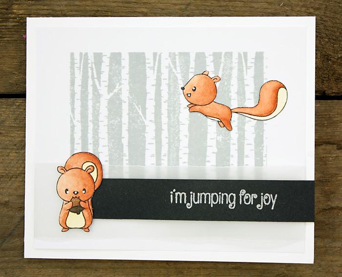 wieesmirgefaellt.de | Squirrels + Cats | Clearly Besotted